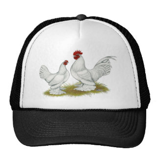 Booted Bantams Hat