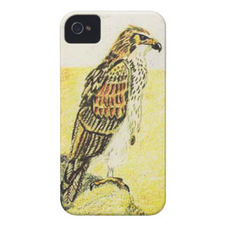 Booted Eagle, Pale Phase iPhone 4 Cover