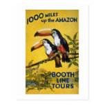 Booth Line Tours 1,000 Miles Up the Amazon Macaws Post Card