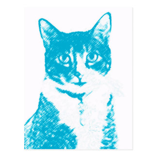 Boots the Cat in Blue Postcard