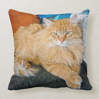 Boppy Throw Pillow