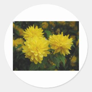 Boquet amarillo pegatina redonda