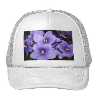Boquet violeta gorra