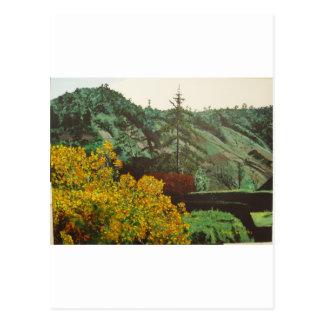 Boquete, Panama#3 Painting Postcard
