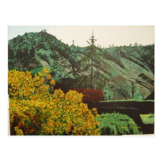 Boquete, pintura Panama#3 Postal