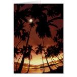 Bora Bora, French Polynesia Sunset shot through Greeting Cards