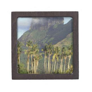Bora Bora, French Polynesia Waterfront scene and Jewelry Box