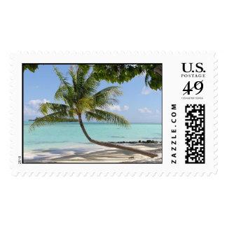 Bora Bora Palm Stamp