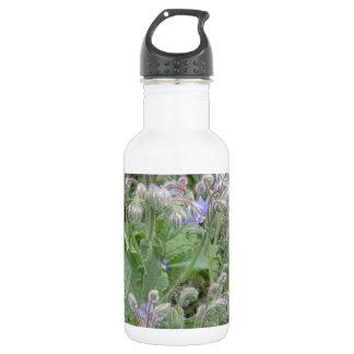 Borage 18oz Water Bottle