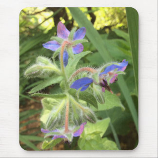 BORAGE Blue Pink Green --- Mouse Pad