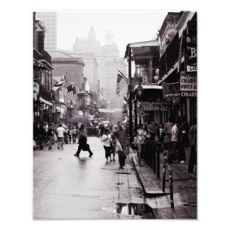 Borbón lluvioso impresión fotográfica