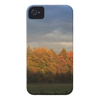 Borde de bosque iPhone 4 Case-Mate carcasas