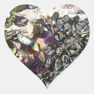 Borde de las aguas en la costa de Oregon Pegatina En Forma De Corazón