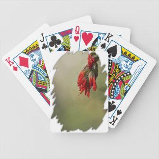 Borde del blanco de la brocha india cartas de juego