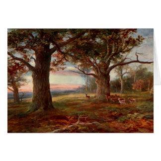 Borde del bosque de Sherwood Tarjeta