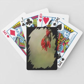 Borde del negro de la brocha india barajas de cartas