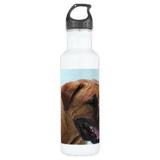 Bordeaux 24oz Water Bottle
