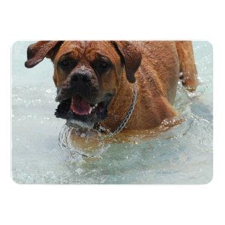 Bordeaux Mastiff Dog 5x7 Paper Invitation Card