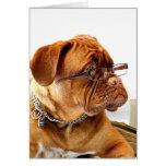 Bordeauxdog Greeting Card