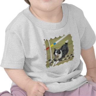 border-collie-15.jpg tee shirts