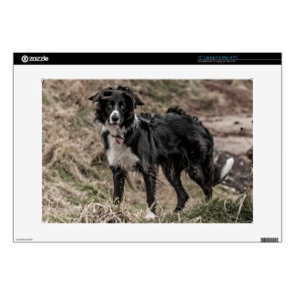 "Border Collie 15"" Laptop For Mac & PC Skin"