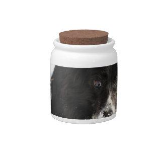 border-collie-8.jpg candy jar