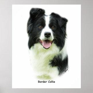 Border Collie 9A015D-24 Poster