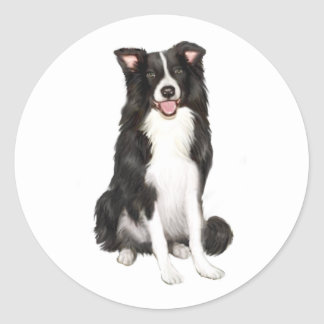 Border Collie (A) - Sitting Classic Round Sticker