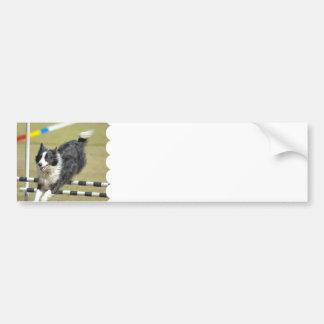 Border Collie Agility  Bumper Sticker