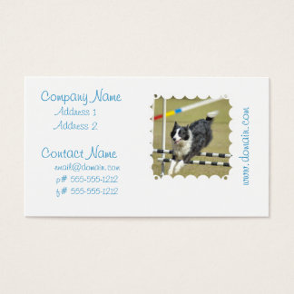 Border Collie Agility Business Cards