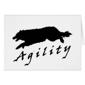 Border Collie Agility~Original Notecard