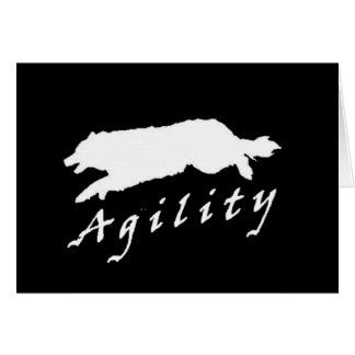 Border Collie Agility~Original Notecard