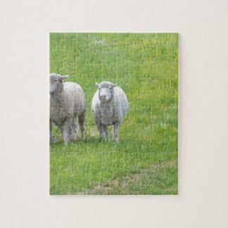Border Collie and Ewe Jigsaw Puzzle