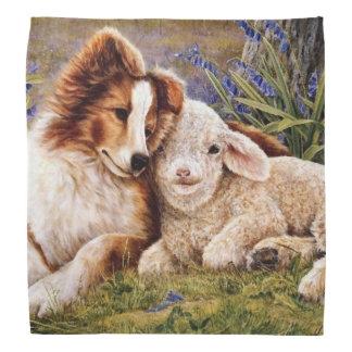 Border Collie And Sheep Bandana