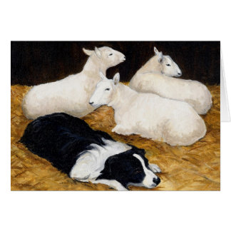 """Border Collie and Sheep"" Dog Art Greeting Card"