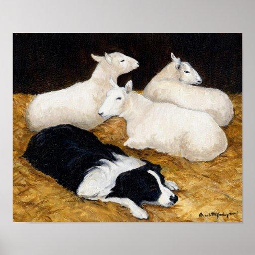 Border Collie and Sheep Dog Art Print
