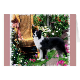 Border Collie Art Gifts Card