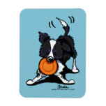 Border Collie at Play Magnets