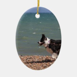 Border Collie at the Beach Ceramic Ornament