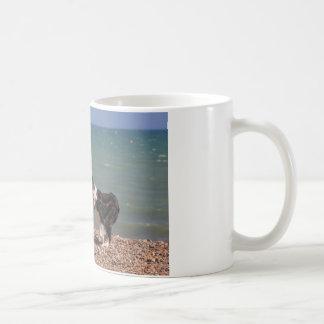 Border Collie at the Beach Coffee Mug