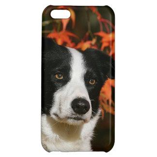 Border Collie Autumn Headshot iPhone 5C Case
