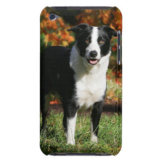 Border Collie Autumn Standing Barely There iPod Cover