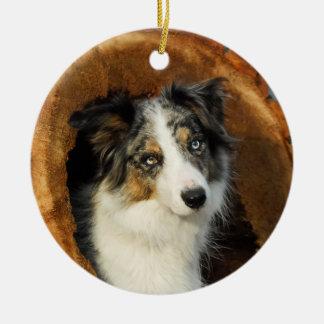 Border Collie Blue Merle Dog hang Decor Ceramic Ornament