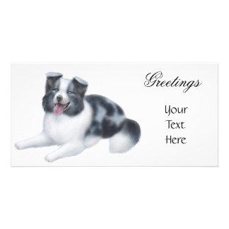 Border Collie Blue Merle Photo Card