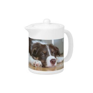 Border Collie Brown & White Dog Teapot at Zazzle
