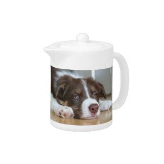 Border Collie Brown & White Dog Teapot