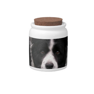 Border Collie Candy Jar