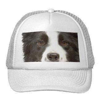 Border Collie Cap Trucker Hat