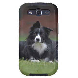 border collie samsung galaxy s3 covers