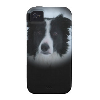 Border Collie iPhone 4/4S Cover